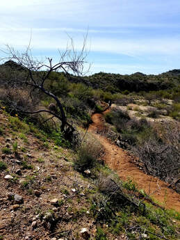 Trails - Wickenburg Conservation Foundation